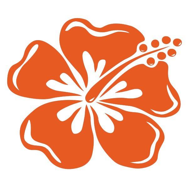 Grand sticker hibiscus pour voiliers et bateaux moteur - Dessin de fleur en noir et blanc ...