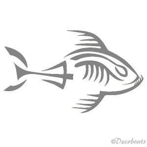 Piranha squelette