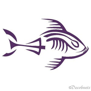Piranha squelette tribord amethiste