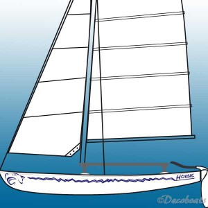 Pack Hobie Cat Requin